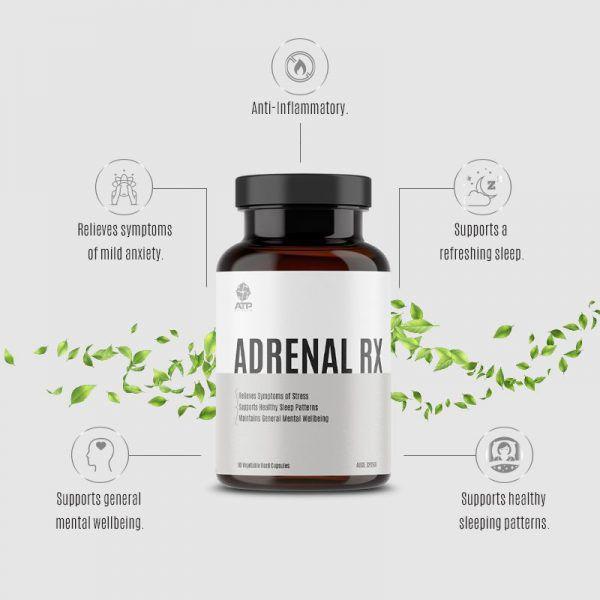 The Vital + Adrenal Bundle 4